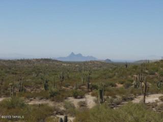 25783 S Blazed Ridge Road  B, Oracle, AZ 85623 (MLS #21311757) :: Long Realty - The Vallee Gold Team