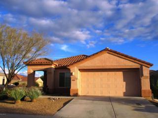 5137 W Desert Eagle Circle  , Marana, AZ 85658 (#21501225) :: Long Realty - The Vallee Gold Team