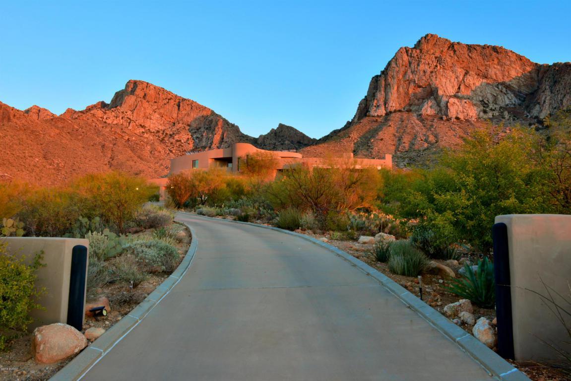 9810 N Carodera Canyon Place