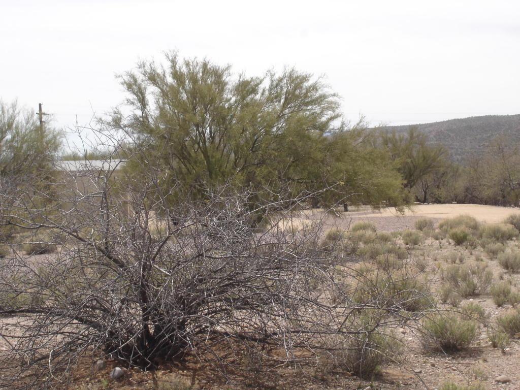 4780 S Jumping Cactus Road