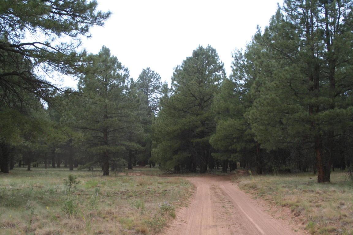 TBD  Forest Rd 9420N