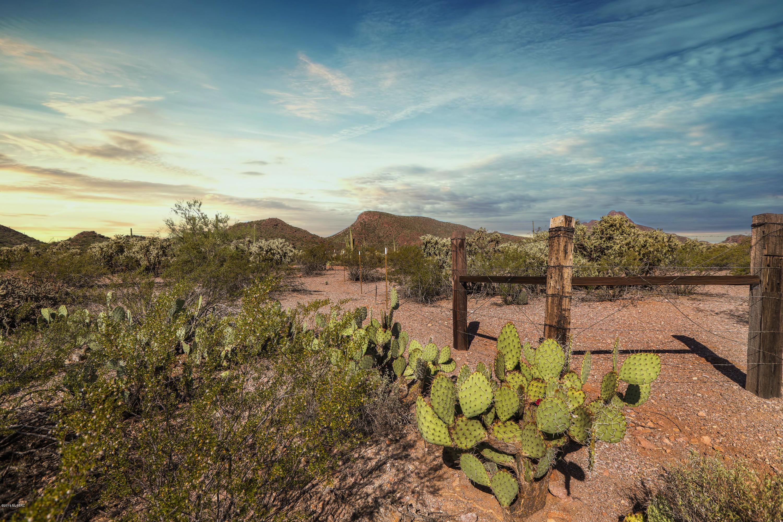 Reserve at Saguaro Park  1-15