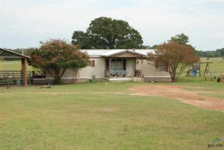 4465 W Hwy 67  , Mt Vernon, TX 75457 (MLS #10048609) :: The Kerissa Payne Team at RE/MAX Legacy