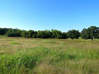 LOT 17 & 18  Oak Hills Addition  , Lindale, TX 75771 (MLS #10048813) :: The Kerissa Payne Team at RE/MAX Legacy
