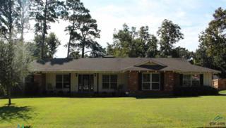 1523  Hubbard Drive  , Tyler, TX 75703 (MLS #10049558) :: The Kerissa Payne Team at RE/MAX Legacy