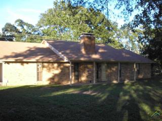 14375  State Hwy 64 E  , Tyler, TX 75707 (MLS #10049666) :: The Kerissa Payne Team at RE/MAX Legacy