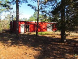 18572  Hwy 69 N.  , Lindale, TX 75771 (MLS #10053976) :: The Kerissa Payne Team at RE/MAX Legacy