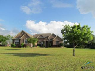 19580  Ridge Point Circle  , Lindale, TX 75771 (MLS #10055628) :: The Kerissa Payne Team at RE/MAX Legacy
