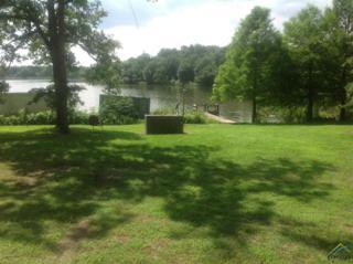 1274  Lake Franklin Drive  , Winnsboro, TX 75494 (MLS #10056195) :: The Kerissa Payne Team at RE/MAX Legacy