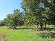 LOTS 1 & 2  Cr 442  , Lindale, TX 75771 (MLS #10049829) :: The Kerissa Payne Team at RE/MAX Legacy
