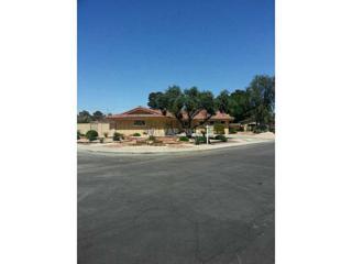 1716  Loch Lomond Wy  , Las Vegas, NV 89102 (MLS #1534750) :: The Snyder Group at Keller Williams Realty Las Vegas