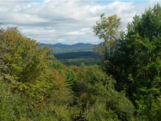 1607  Skitchewaug Trail  , Springfield, VT 05156 (MLS #4385368) :: KWVermont