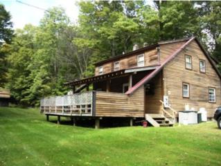 3982 S Route 103  , Mount Holly, VT 05758 (MLS #4385392) :: KWVermont