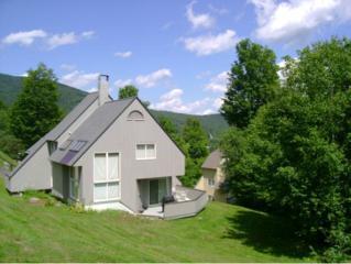 47  South Village  47, Warren, VT 05674 (MLS #4389884) :: KWVermont