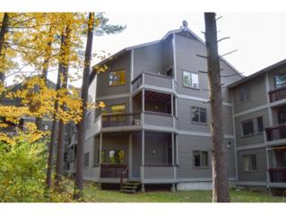 161  Austin Drive  37, Burlington, VT 05401 (MLS #4392185) :: The Gardner Group