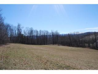3-2  Catchapaw Rd  , Hinesburg, VT 05461 (MLS #4416014) :: KWVermont