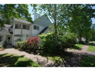 69  Winding Brook Drive  69, South Burlington, VT 05403 (MLS #4426150) :: KWVermont