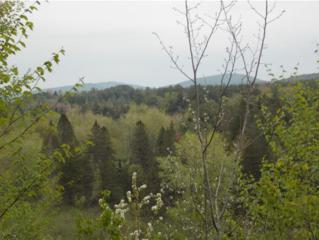 -  Maxfield Rd  , Albany, VT 05845 (MLS #4426215) :: KWVermont