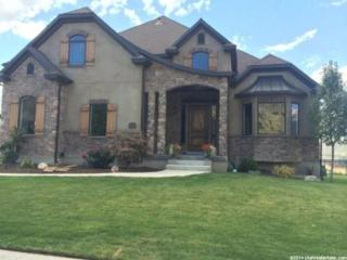 11289 N Park Dr W , Highland, UT 84003 (#1260013) :: The Utah Homes Team with Re/Max Results