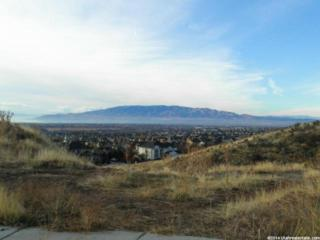 721 W Lake View Dr N 4, Alpine, UT 84004 (#1272880) :: ATeam Realty