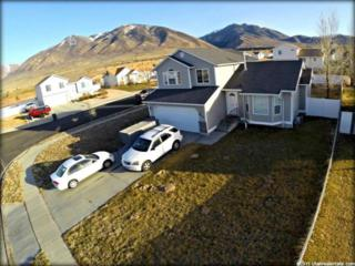 862  Bonneville Way  , Tooele, UT 84074 (#1284281) :: Red Sign Team