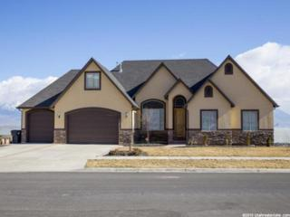 2894 S Fox Pointe Dr W , Saratoga Springs, UT 84045 (#1296766) :: The Utah Homes Team with Re/Max Results