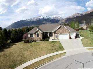 1055 E Meadow Cir  , Alpine, UT 84004 (#1297262) :: Utah Real Estate Professionals