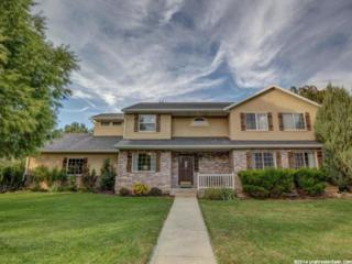 6442 W 10900 N , Highland, UT 84003 (#1262200) :: The Utah Homes Team with Re/Max Results