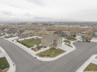 452 S Willow Park Dr W , Lehi, UT 84043 (#1271352) :: The Utah Homes Team with Re/Max Results