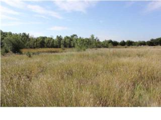 1  S Of 39Th St S. & 391St St W  , Cheney, KS 67025 (MLS #373641) :: Select Homes - Mike Grbic Team