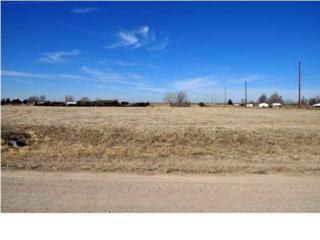4001 S Garden Lane  , Cheney, KS 67025 (MLS #363542) :: Select Homes - Mike Grbic Team