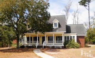 604  Mcginnis  , Wilmington, NC 28412 (#505607) :: RE/MAX Essential