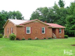 464  Montague  , Currie, NC 28435 (#509304) :: RE/MAX Essential
