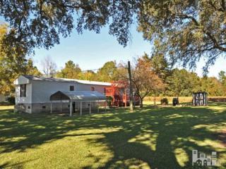 241  Camp Kirkwood  , Watha, NC 28478 (#513671) :: RE/MAX Essential