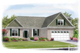 1153  Spring Glen  , Leland, NC 28451 (#514166) :: The Keith Beatty Team