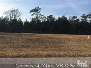 514  White Picket Way  , Holly Ridge (Onslow), NC 28445 (#515340) :: RE/MAX Essential