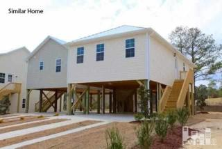 119  James  , Surf City, NC 28445 (#515342) :: The Keith Beatty Team