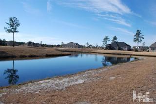 2075  Wind Lake Way  , Leland, NC 28451 (#515345) :: RE/MAX Essential