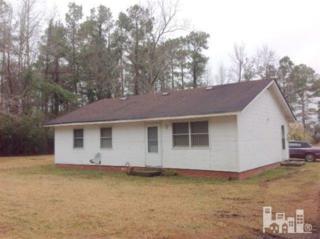 251  Ellis Farm  , Riegelwood, NC 28546 (#516668) :: RE/MAX Essential