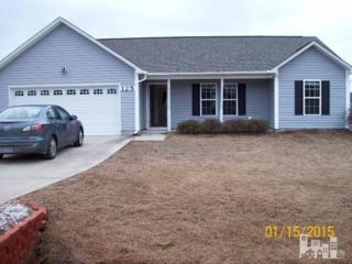 125  Christy  , Beulaville, NC 28518 (#516829) :: The Keith Beatty Team