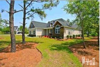 144  Snow Goose  , Sneads Ferry, NC 28460 (#516919) :: RE/MAX Essential