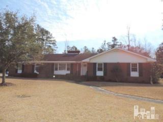 809 E Wilmington  , Burgaw, NC 28425 (#516963) :: RE/MAX Essential