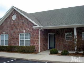 229  Hibiscus  , Wilmington, NC 28412 (#518344) :: RE/MAX Essential