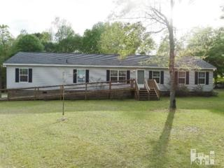 205  Barbara  , Burgaw, NC 28425 (#521035) :: RE/MAX Essential