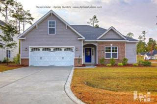 235  Marsh Haven  , Sneads Ferry, NC 28460 (#522865) :: The Keith Beatty Team