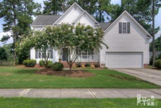 221  Windchime  , Wilmington, NC 28412 (#509608) :: The Keith Beatty Team