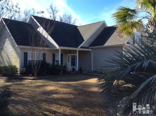 6604  Wheatfields  , Wilmington, NC 28411 (#515255) :: RE/MAX Essential