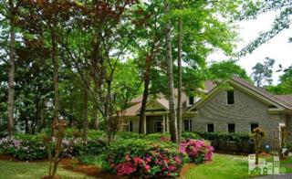 1508  Meridian  , Wilmington, NC 28411 (#518849) :: The Keith Beatty Team
