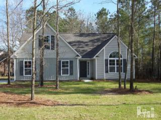 9401  Lyn Marie  , Leland, NC 28451 (#514247) :: The Keith Beatty Team