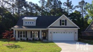 8206  Porters Crossing  , Wilmington, NC 28411 (#508809) :: The Keith Beatty Team